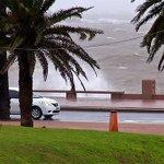TEMPORAL: Algunos árboles caídos y el puerto de Montevideo cerrado. Vía @carodominguezuy https://t.co/Eg1D2zTeSh https://t.co/bPQOQAzU2j