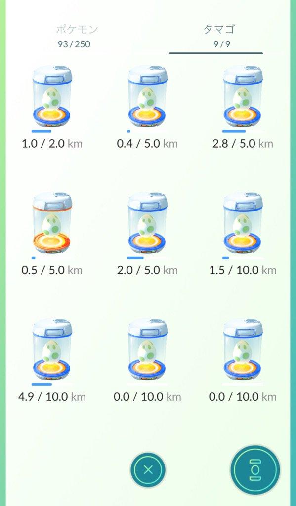 10キロ卵めちゃゲット!はようまれろーヽ(〃v〃)ノ