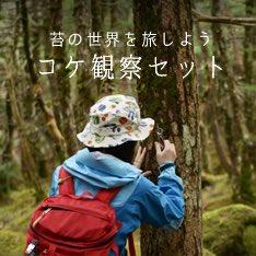明日から「コケ観察セット」が発売されます。森の中の美しい苔の世界、苔テラリウムの小さな宇宙をお楽しみ下さい。観察入門ガイドブックも付属してます。スプレーの霧の細かさもこだわりました。 https://t.co/h3dIYFxeky https://t.co/DOKrntBTJU