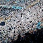 A las 21 mi corazón va a latir más que nunca! Vamos Belgrano hoy 💙💙💙 https://t.co/wn5Shn95Q4
