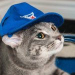 Grab your @BlueJays rally caps, its walk off time! #BlueJays https://t.co/Y8CKU6rieN