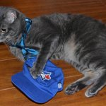 This game is still TIE-D as we head into extra innings! Go #BlueJays! https://t.co/u7LsGDQSWm