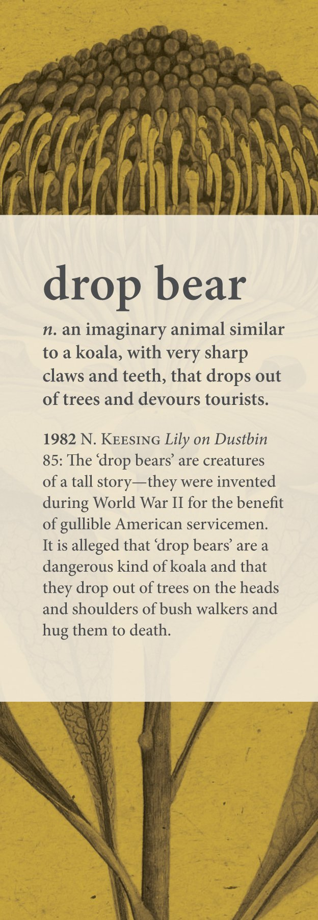 Australian National Dictionary second ed., new entry: drop bear. #KnowYourAussie @ozworders https://t.co/4pNWbX3zby