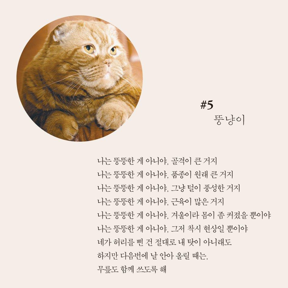 시 읽다가 웃겨서 눈물났네요 :)  고양이의 시선으로 쓴 시집이 나왔습니다. 제목은 #고양이의시 https://t.co/Ga6f2s3frO