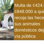 Conozca la Ley de Bienestar Animal https://t.co/OhfJezph1t https://t.co/opSXKU9vJE