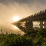 Foggy sunrise in #Rovaniemi #Lapland #Finland https://t.co/dzhV5c1YSr
