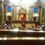 Torn del grup parlamentari @JuntsPelSi #Parlament #LaRosaVerda https://t.co/Qui4YVRujp