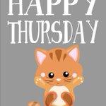 Happy Thursday #kprs #essexbridaltalk #UKSOPRO #FlockBN #87RT https://t.co/ItztgszK3n