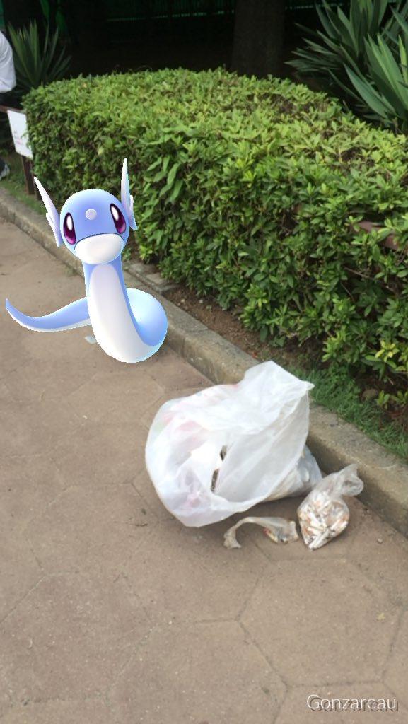 ボッチGOしながら世田谷公園でゴミ拾いしてきた!  二時間で45L袋がいっぱい拾い集めたよ! 少しで…