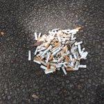 ボッチGOしながら世田谷公園でゴミ拾いしてきた! 二時間で45L袋がいっぱい拾い集めたよ! 少しでもポケモンのイメージがよくなるといいな🎶 #ポケモンGO https://t.co/3W9arnceuh