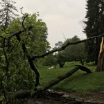 Tree down at Alms Memorial Park off Columbia Parkway on the east side of #Cincinnati. @wcpo #Cincywx https://t.co/MJa2H73IxC