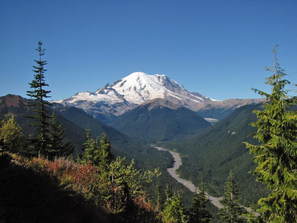 Everything you need to know for the perfect day trip to Mt. Rainier Nat'l Park
