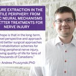 Congratulations to Andrew Pruszynski, PhD, for receiving $1.3M in funding from @CIHR_IRSC: https://t.co/pygTCd4vbT https://t.co/vpAQED5Tpb