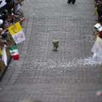 #IfYourDayIsBadAlwaysRemember this happy little dog who thought this parade was just for him. https://t.co/Evey7bjpLz