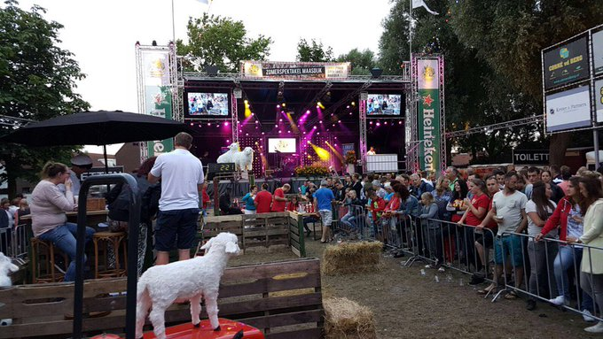 In Maasdijk wordt momenteel de shoarmarace gehouden. Schapen hoeden en broodje shoarma eten tegelijk #spektakel https://t.co/G6j4bT7GUc