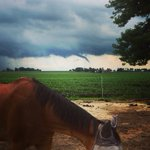 Funnel reported near Pecatonica. Photo credit: Carrie Fritz  #ilwx https://t.co/5jNae4kTkH