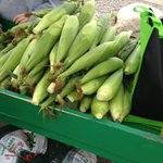 #Taber corn to start hitting stands this weekend #yql https://t.co/jpD6P7pbT2 https://t.co/kFS3nKWOR9