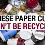 EXPOSED: Paper coffee cups arent actually recyclable! RT to spread the word. #wastenot #WarOnWaste @HughsWaronWaste https://t.co/6sHz4Ce7WV