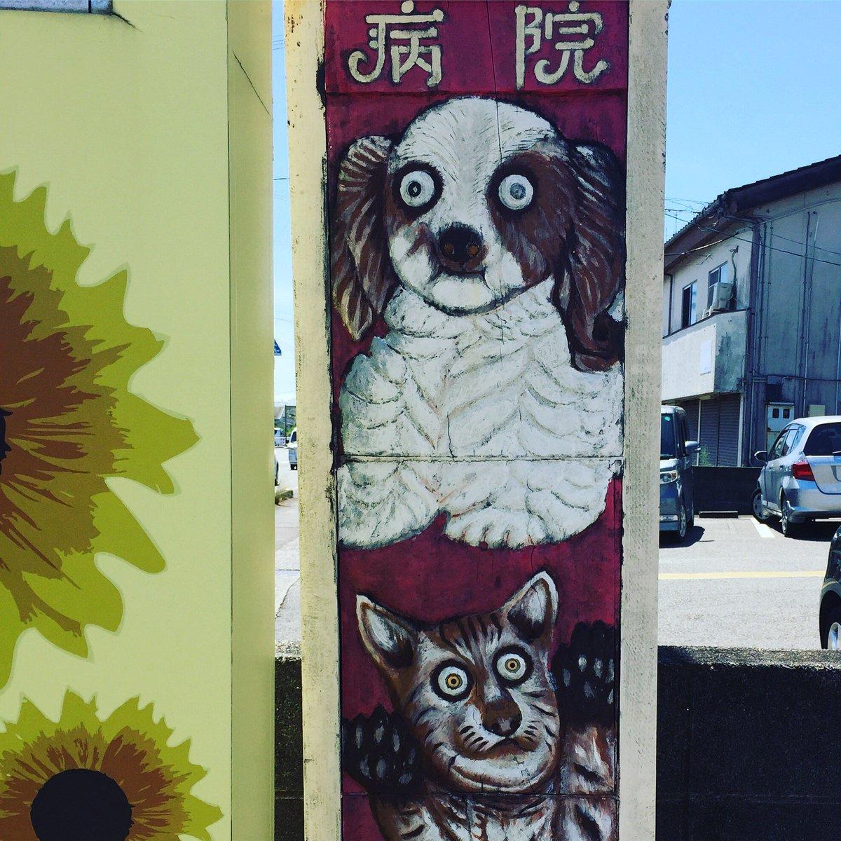 わが家の愛犬のかかりつけの動物病院の看板が最高だから見てーーー!