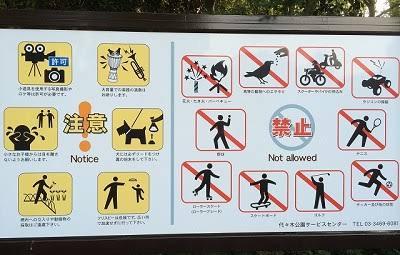 現代の公園は不幸ですよ。 昔はボール遊びも遊具遊びも、花火遊びもできましたが、クレーマーや反対派の意…