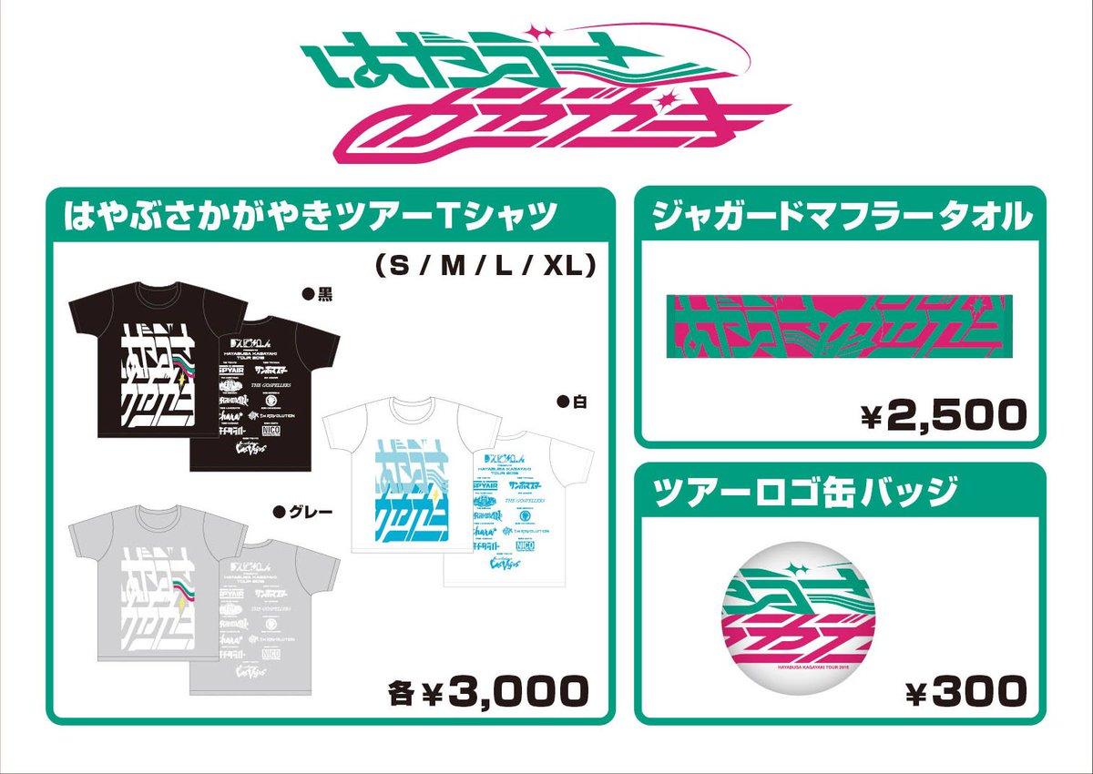 本日7/29(金)は『はやぶさかがやきツアー2016』6公演目・富山/クロスランドおやべでのライブで…