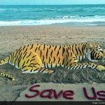 Sudarsan Pattnaik spreads message of #SaveTigers with a sand art on #InternationalTigerDay at Puri beach, Odisha https://t.co/07PW0eqckF