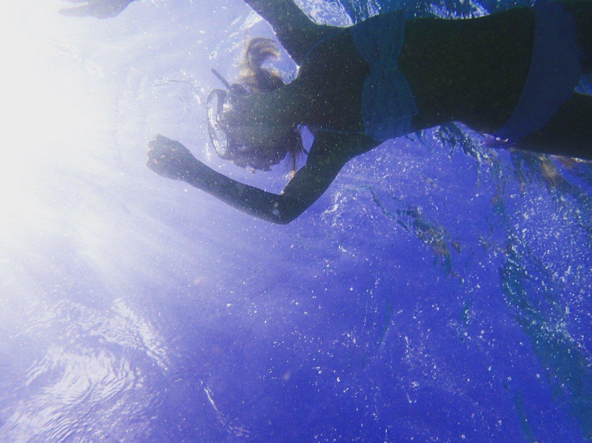 カメさん見つけたよ(^^)  初めて生でみた( ;  ; ) 感動した… 触ったらいけないから手を振…