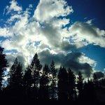 去年フィンランドで見たでっかい空のゴジラ。映画の初日に貼ろうって決めていました! #シンゴジラ https://t.co/QZUnpmxJdN