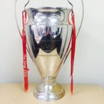 Jamies replica Champions League trophy will be at the charity game this Sunday @Bootle_FC for @sophiefearns #LFC https://t.co/ba8SFf6abB