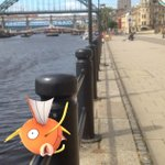 Get out exploring #Newcastle with #Pokemon Go Get #Walking into your day!!! https://t.co/PI8tsHsnMz https://t.co/HQJmdGlBW4