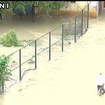 Bengaluru (Karnataka): Vehicles inundated in rain water, water logging in several parts of the city https://t.co/SL8uBF1aAh