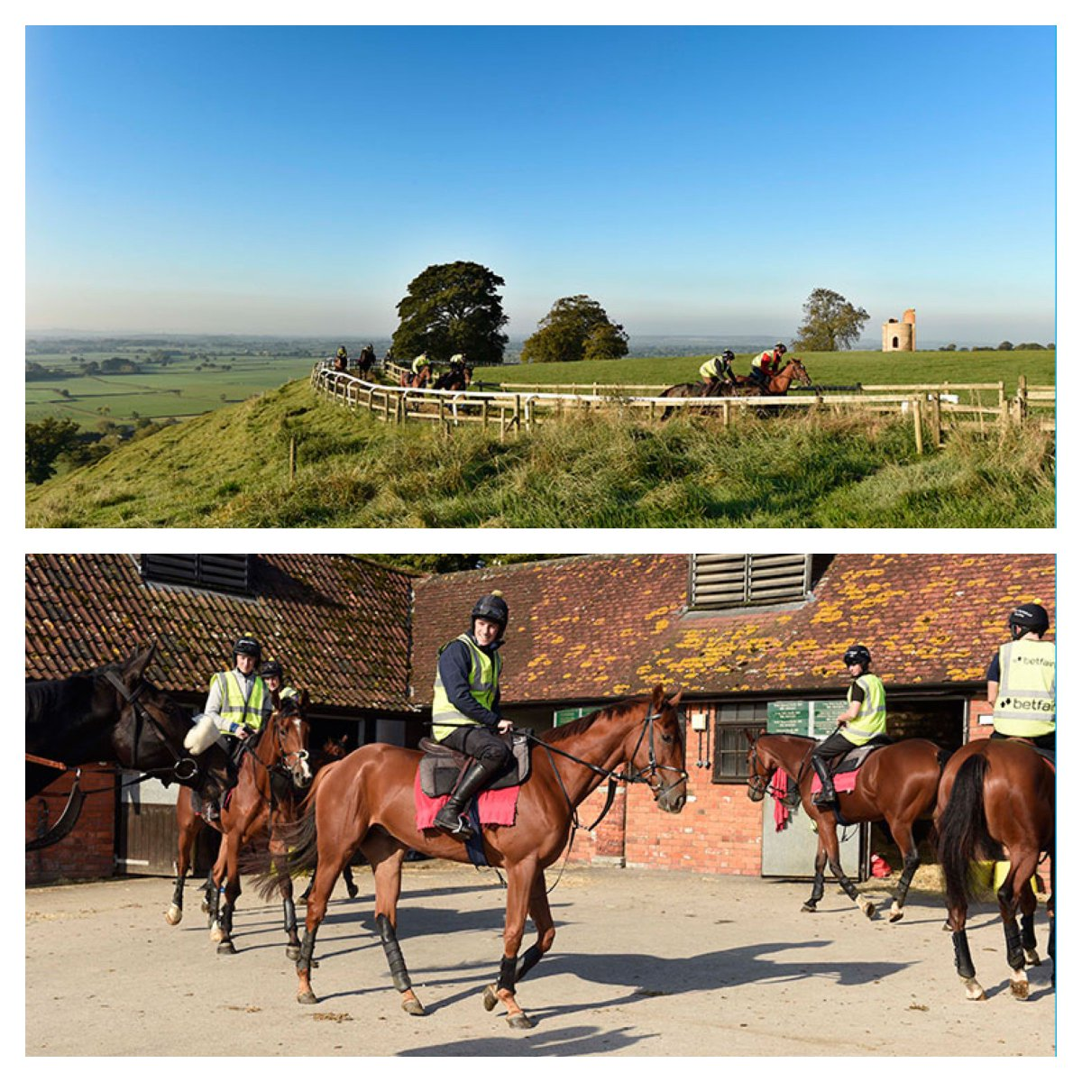 Champion Trainer @PFNicholls seeks experienced stable staff to join his team. Find out more https://t.co/XLEGtD5CaA https://t.co/KlvmDxnfDW
