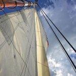 Sail Boston Harbor #wickedsailing #bostonharbor #boston #boat #sailboat… https://t.co/EaLk3oP1Me via @aewarfield https://t.co/8JVFguqneR