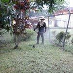 Personal de #DTIPColón realiza corte de hierba en Espinar, Colón. Dando mantenimiento a nuestras áreas verdes #UABR https://t.co/kmF02QVZMu