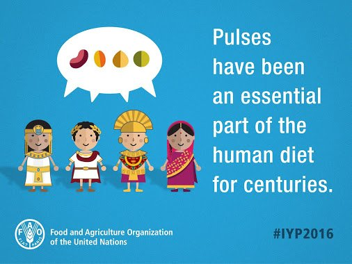 How do pulses contribute to a sustainable world? Find out! https://t.co/VIBstsiZtK #IYP2016 #GlobalGoals https://t.co/yiKYQuQ3B4