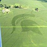 2016 field art on the right, 2015 on the left. Location: Drobny Farms (SW Michigan) Photo credit: John Chapman https://t.co/jguKMYvK7W