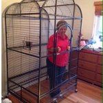 Ive already told me nan shes not getting out until Klopp signs a half decent left back. #LFC https://t.co/KovB51uXTH