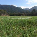 Bom dia, Nação! Em breve terá início mais um dia de treinos no Ninho do Urubu #TRFla https://t.co/hxQqyQwyZJ