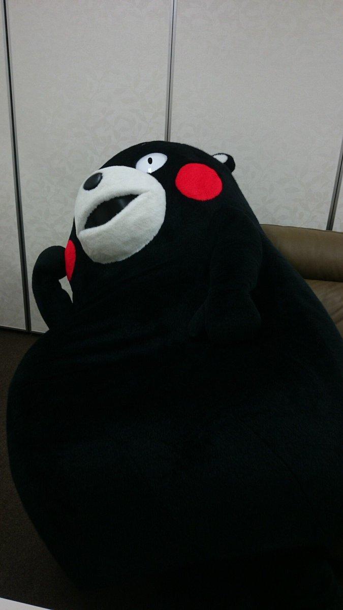 ・・・おやくま〜☆
