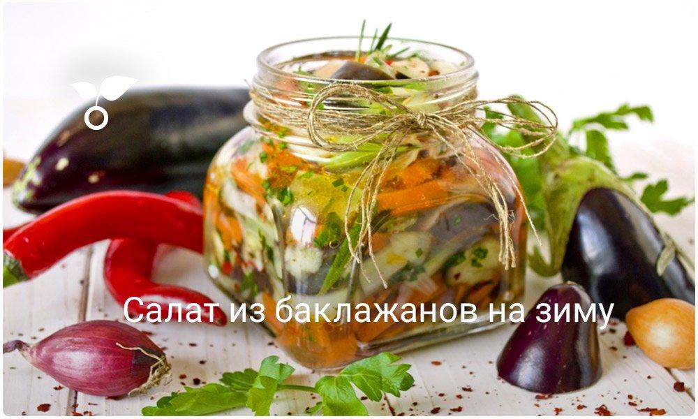 Рецепты салатов на зиму без стерилизации