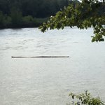 Hey boaters on #yeg #NSask river today - each out for random logs floating down the middle. #river #safety https://t.co/BGhYU5qTEZ