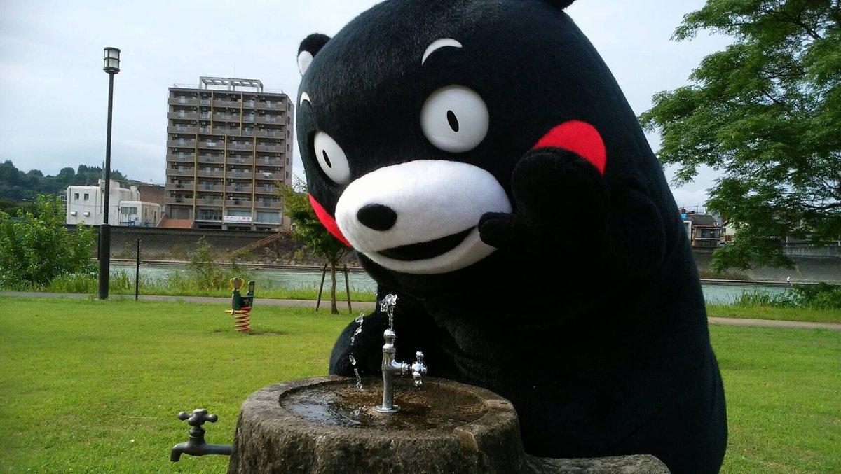 おはくま〜!今日もくーまー(フィンランド語で「暑い」)になりそうだモン。水分補給はくまめにだモン☆