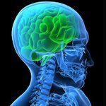 Zapping the brain during sleep could enhance memory