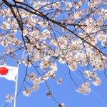 【拡散】東京都の皆様、投票しても何も変わらないと言うのは嘘です。 帰化人は非常に投票率が高く、それが売国議員を作りだし、国益を失う事に繋がります。日本人の投票率は低い 投票に行かなければ、変えられてしまうのです。 #都知事選#投票 https://t.co/jHXWtrduHQ