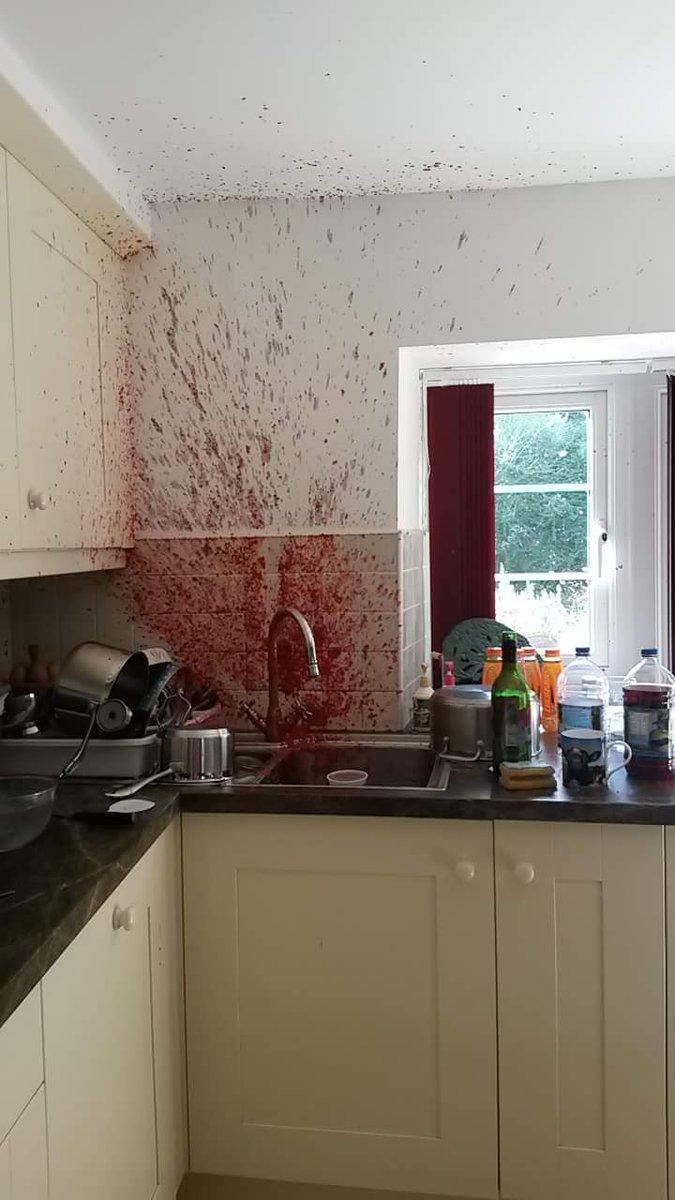 イギリスの友達のママがラズベリージュース作りに失敗した結果が怖すぎる😱😱