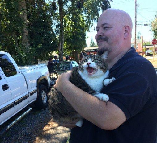 Romeo the cat is the hero America needs https://t.co/21e9kMHhXA https://t.co/u6diiKYUGR