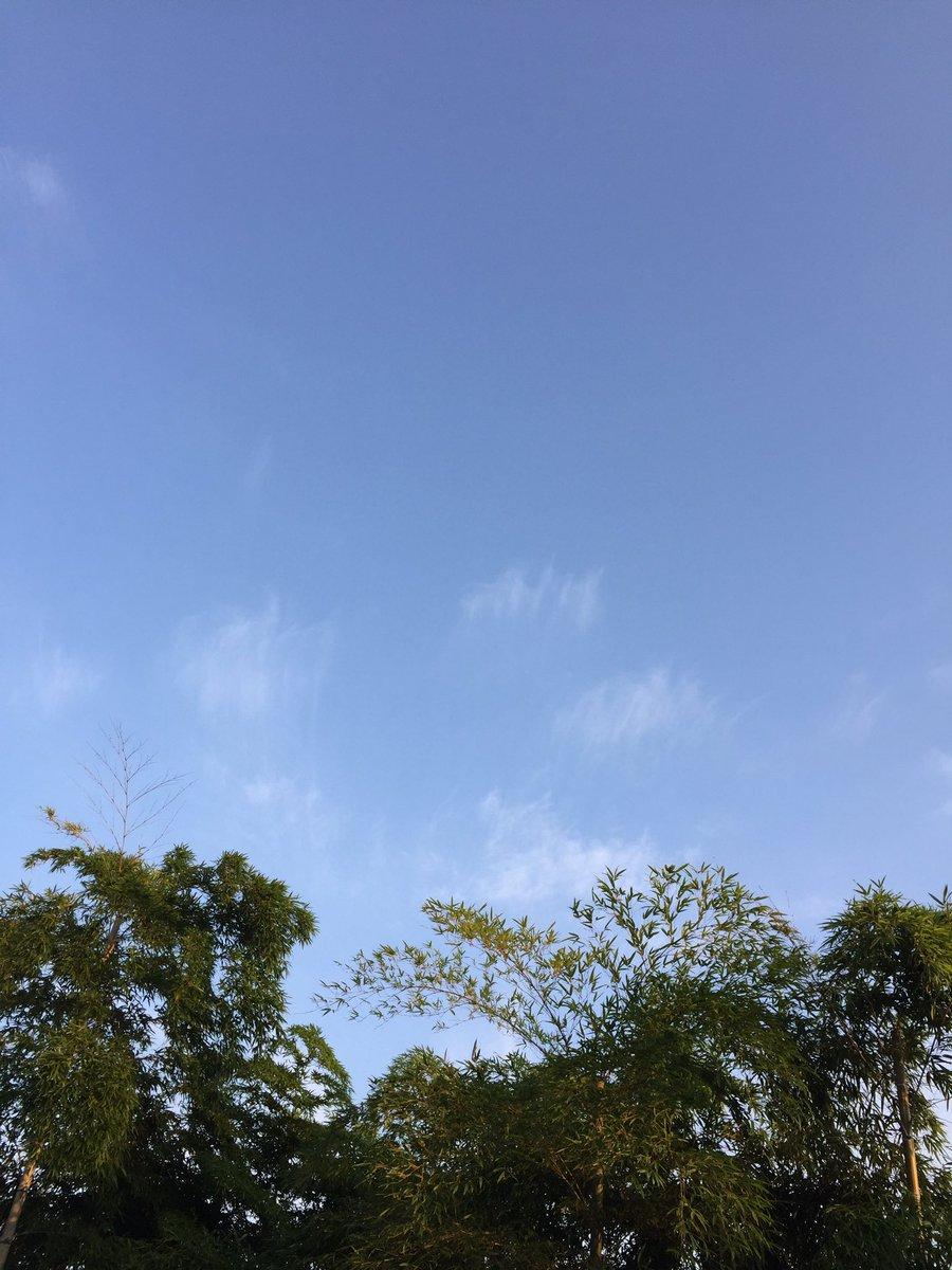 おはようございます。名古屋は晴れて青空、気温34℃まで上がりそうですが夕方から雨になりそうです。8月…