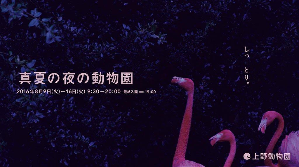 いつもが去ってゆく夕ぐれ。 別の世界が目を覚ます夕やみ。 見えないものが見える夜。 真夏の夜の動物園…
