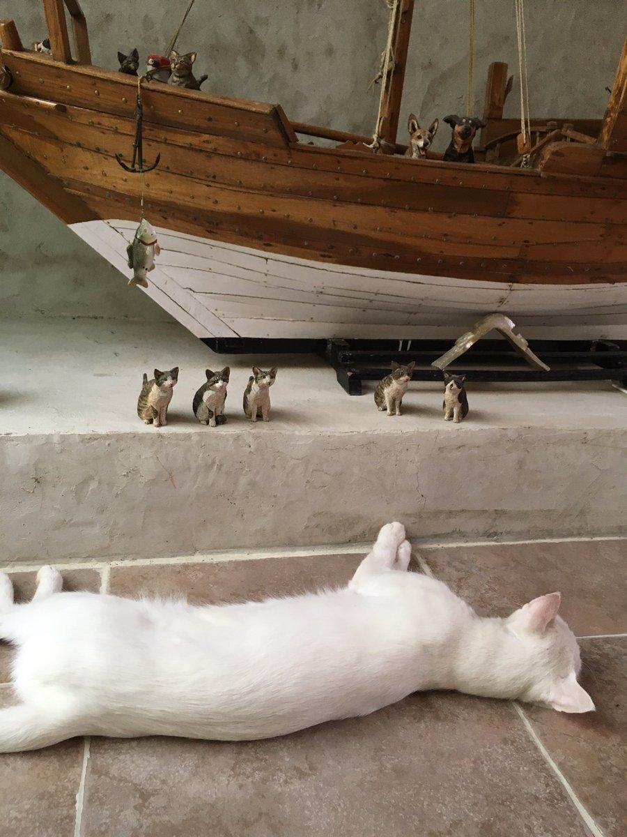 あびさん、またちょーどいい所で寝ているので、ガリバーやった。