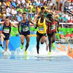 Araptany cruises into Steeplechase FINAL